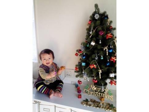 初めてのクリスマスツリー☆彡