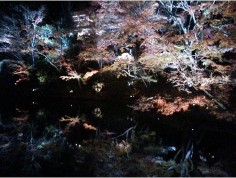 夜の高台寺